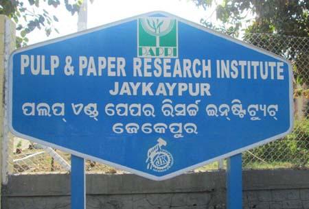 paper and fibre research institute pfi